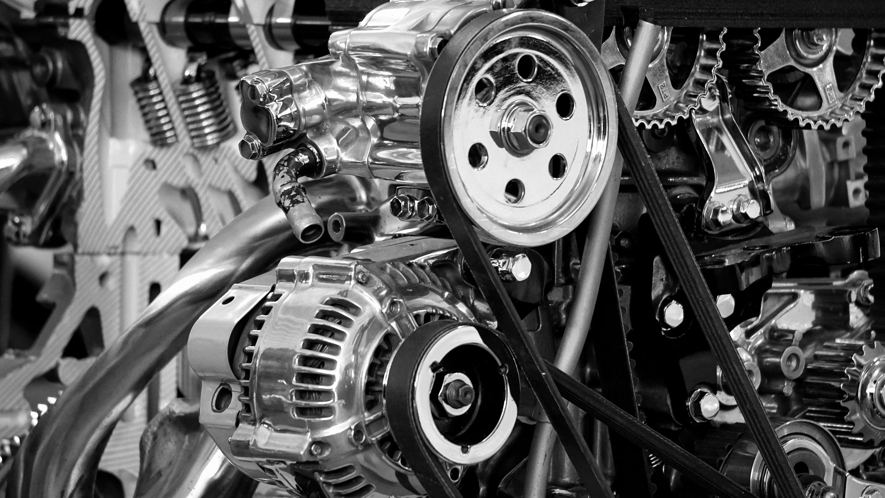 The Squeal of the Serpentine Belt
